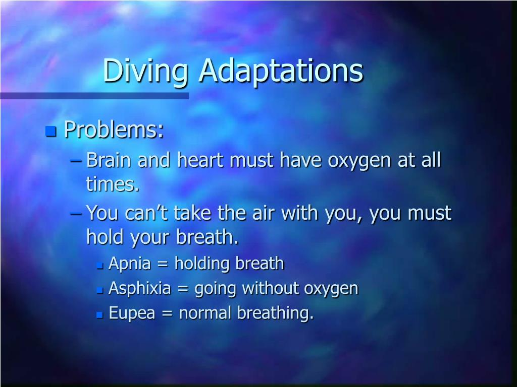 Diving Adaptations