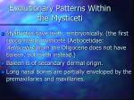 evolutionary patterns within the mysticeti53