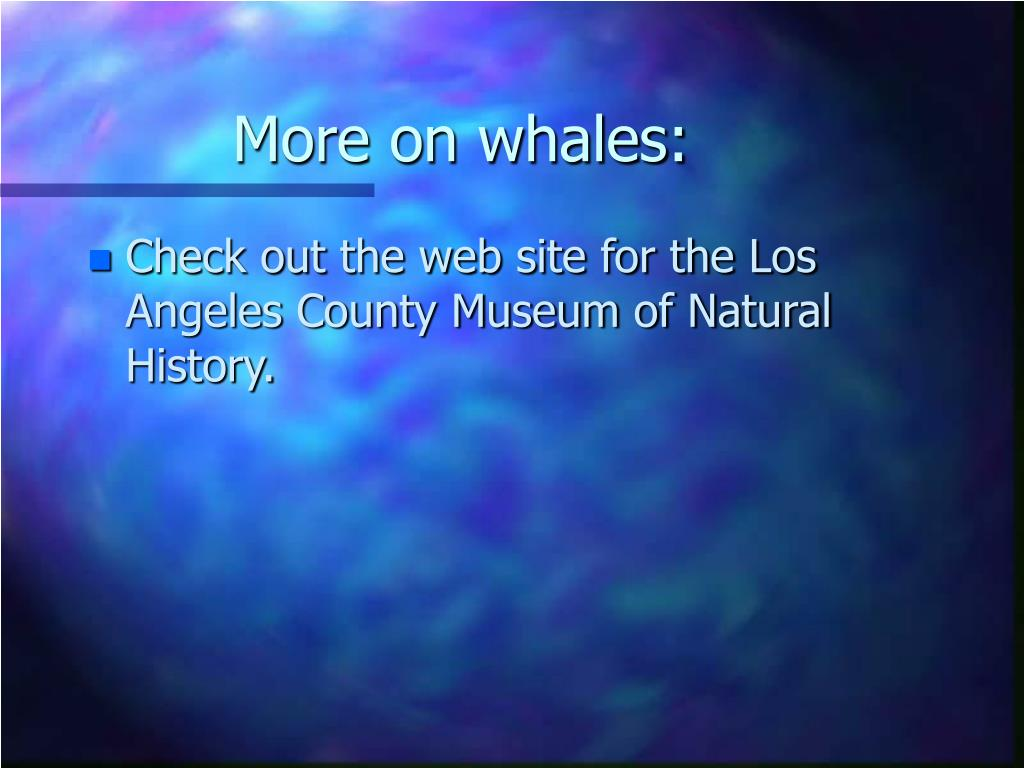 More on whales: