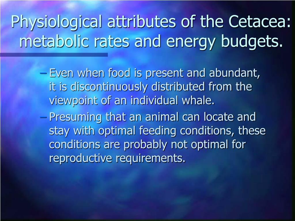Physiological attributes of the Cetacea: metabolic rates and energy budgets.