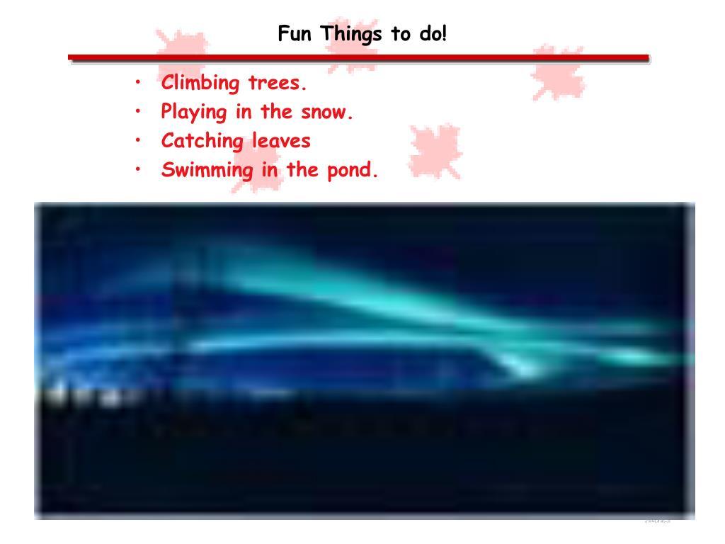 Fun Things to do!