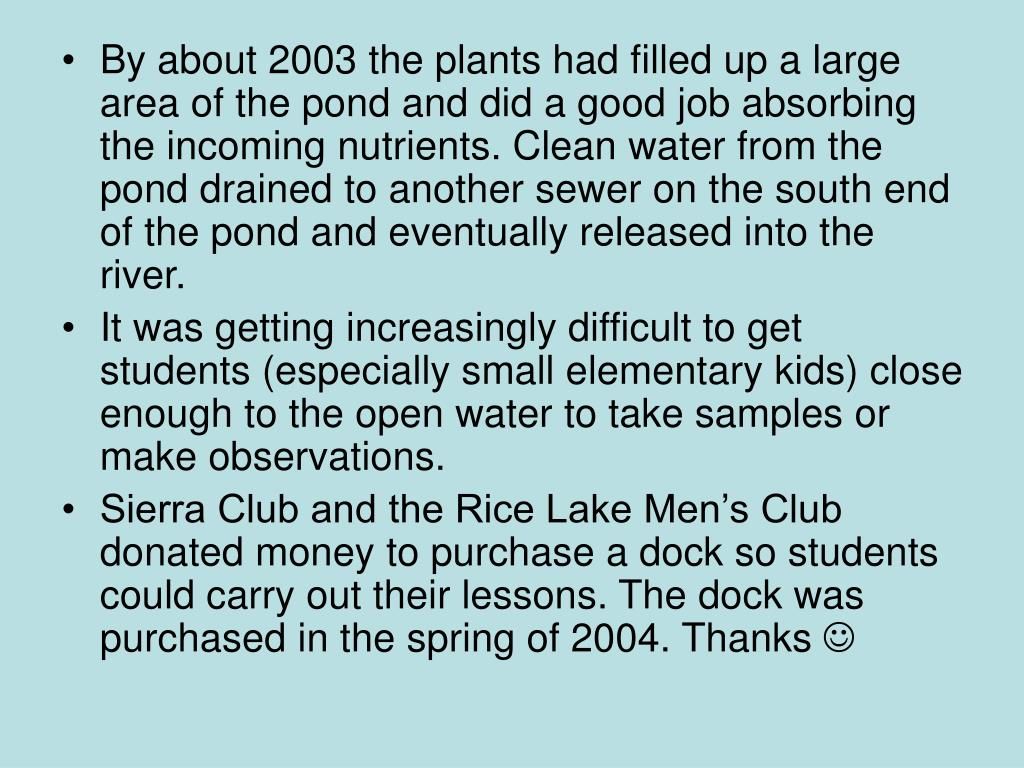 By about 2003 the plants had filled up a large area of the pond and did a good job absorbing the incoming nutrients. Clean water from the pond drained to another sewer on the south end of the pond and eventually released into the river.