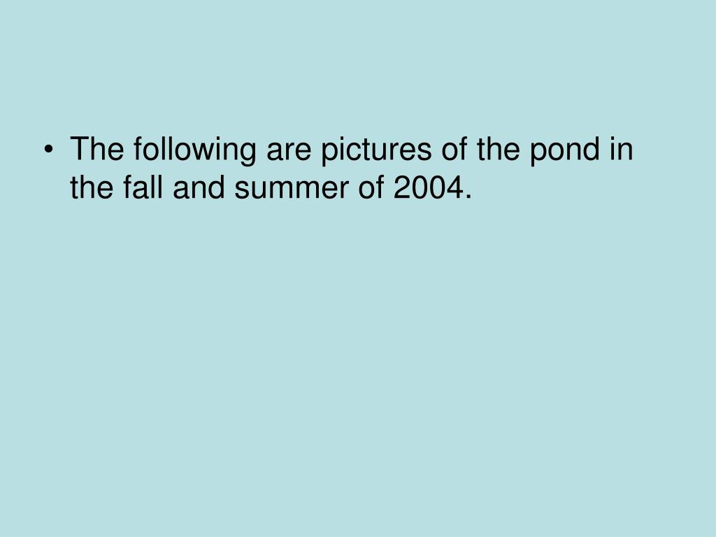 The following are pictures of the pond in the fall and summer of 2004.