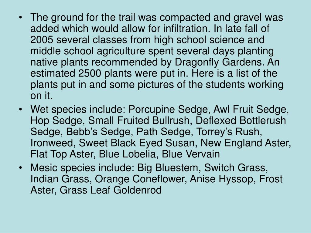The ground for the trail was compacted and gravel was added which would allow for infiltration. In late fall of 2005 several classes from high school science and middle school agriculture spent several days planting native plants recommended by Dragonfly Gardens. An estimated 2500 plants were put in. Here is a list of the plants put in and some pictures of the students working on it.