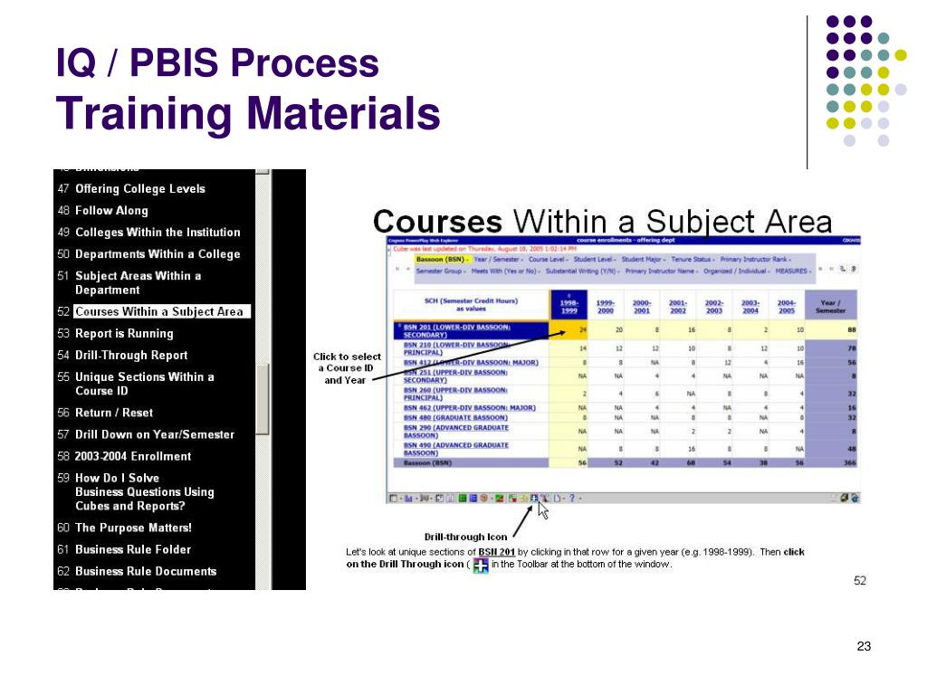 IQ / PBIS Process