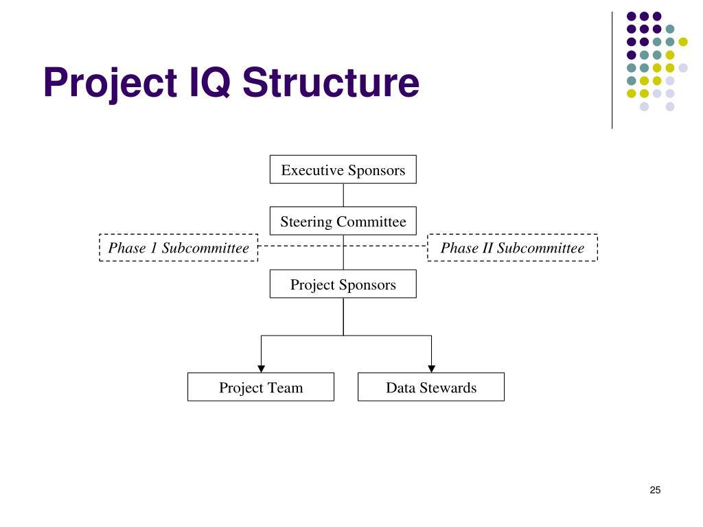 Project IQ Structure