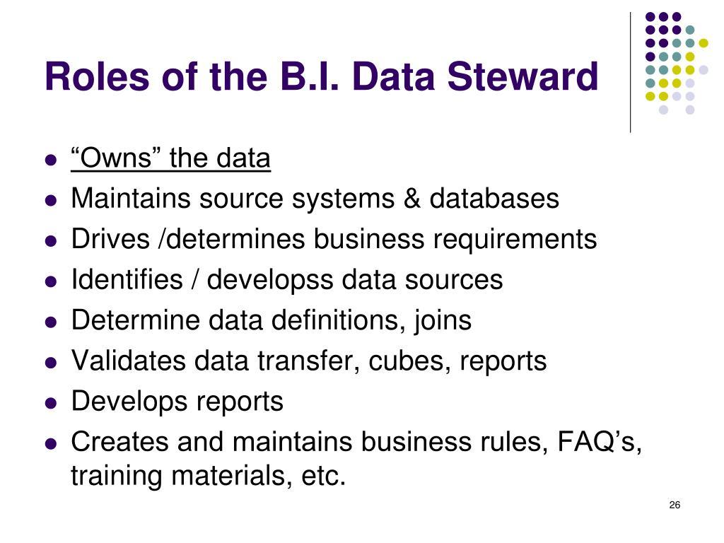 Roles of the B.I. Data Steward