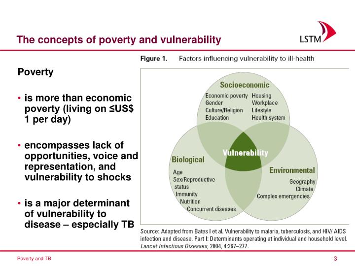 The concepts of poverty and vulnerability