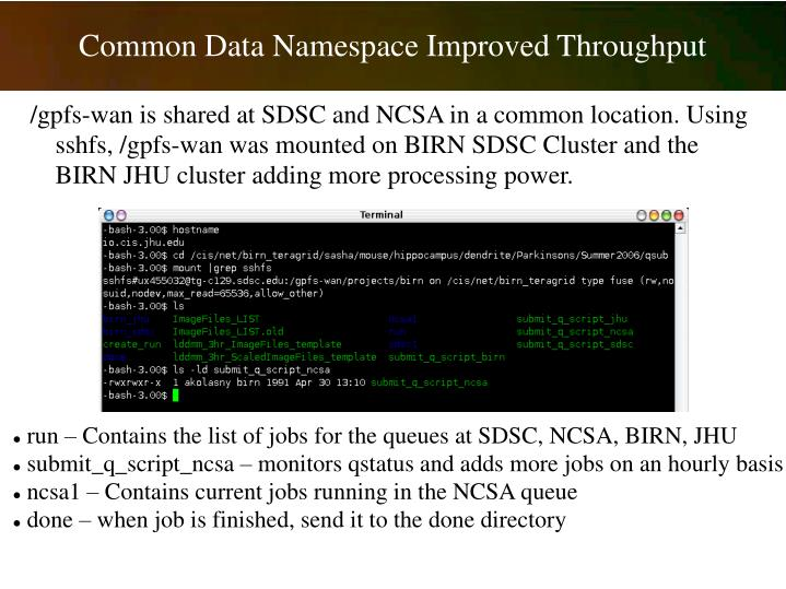 Common Data Namespace Improved Throughput