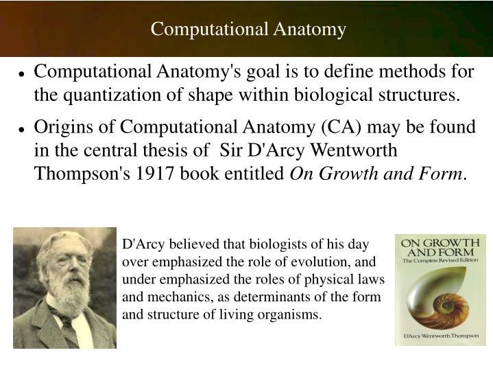 Computational Anatomy