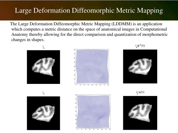 Large Deformation Diffeomorphic Metric Mapping