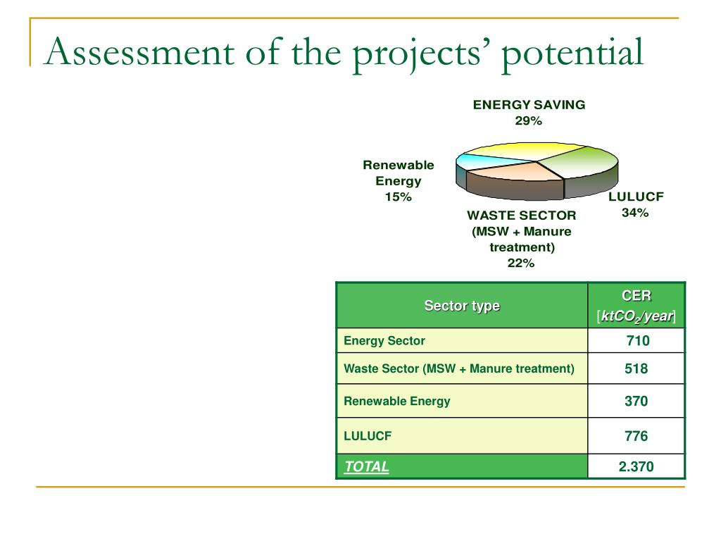 Assessment of the projects' potential