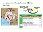 montenegro waste sector msw awms