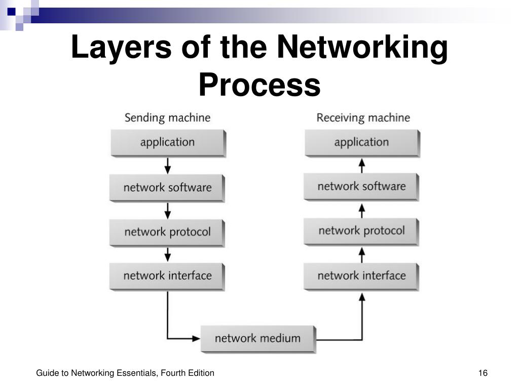 Layers of the Networking Process