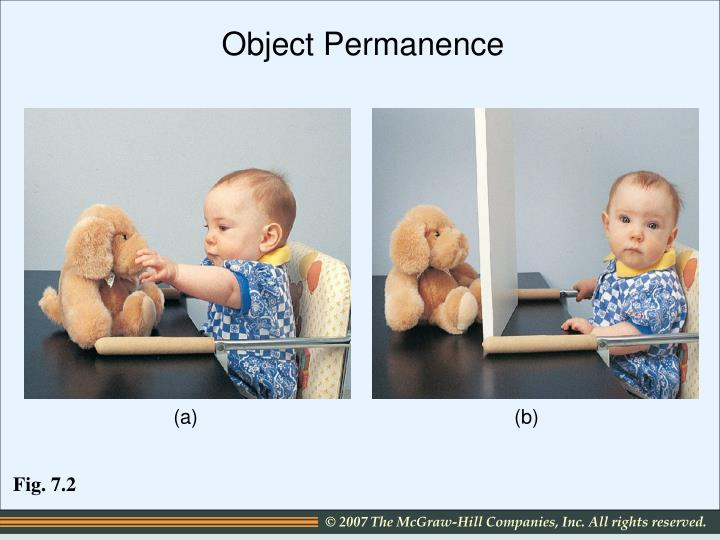 the development of object permanence Object permanence is the understanding that objects continue to exist even when  they cannot  an infant that has started to develop object permanence might  reach for the toy or try to grab the blanket off the toy infants that have not yet.