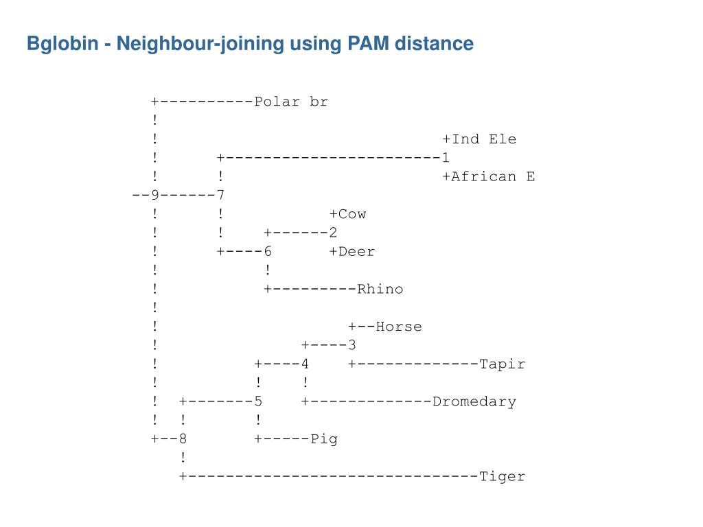 Bglobin - Neighbour-joining using PAM distance