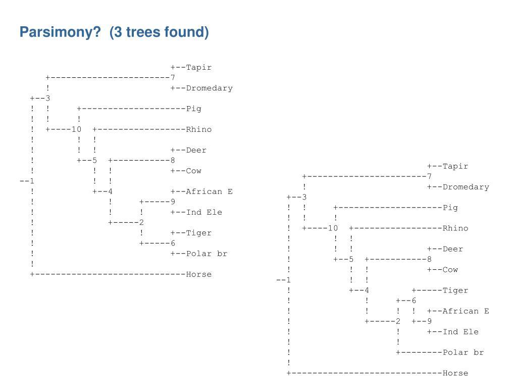 Parsimony?  (3 trees found)