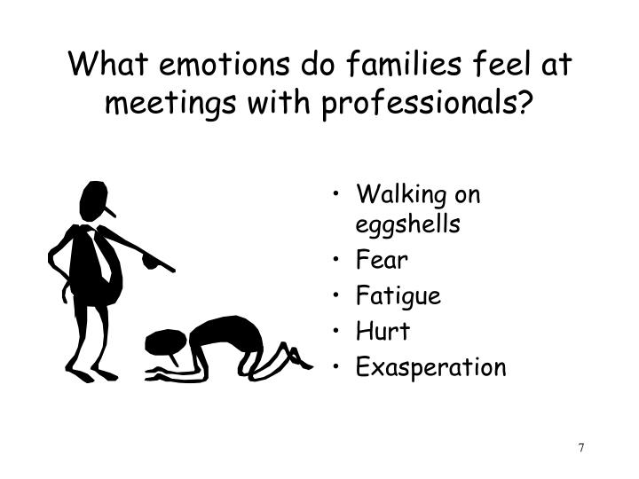 What emotions do families feel at meetings with professionals?