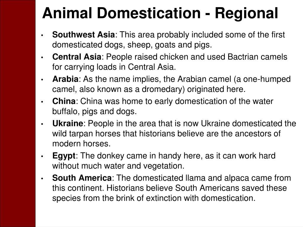Animal Domestication - Regional