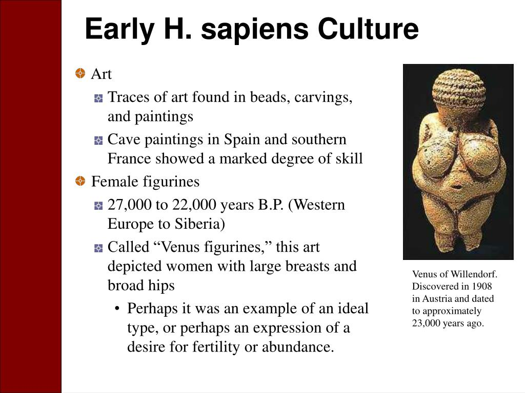 Early H. sapiens Culture