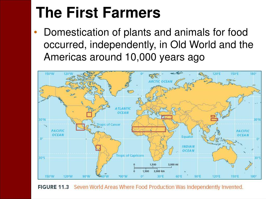 The First Farmers