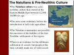 the natufians pre neolithic culture