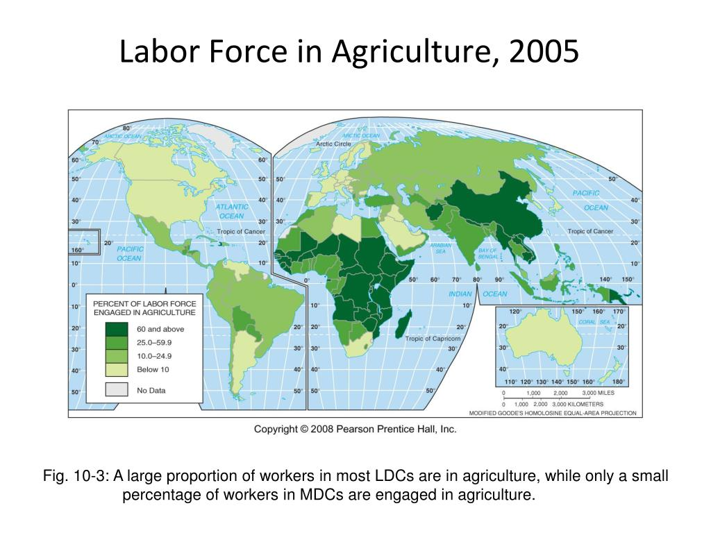 Labor Force in Agriculture, 2005