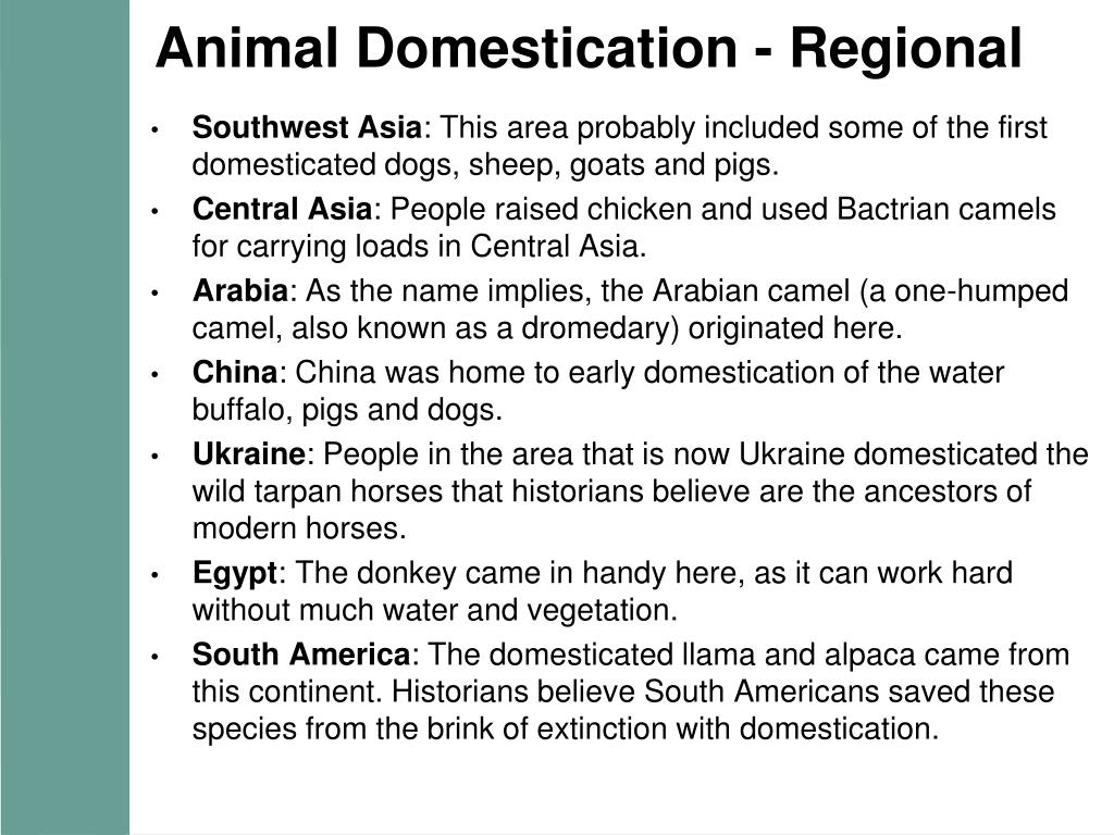 Animal Domestication - Regional