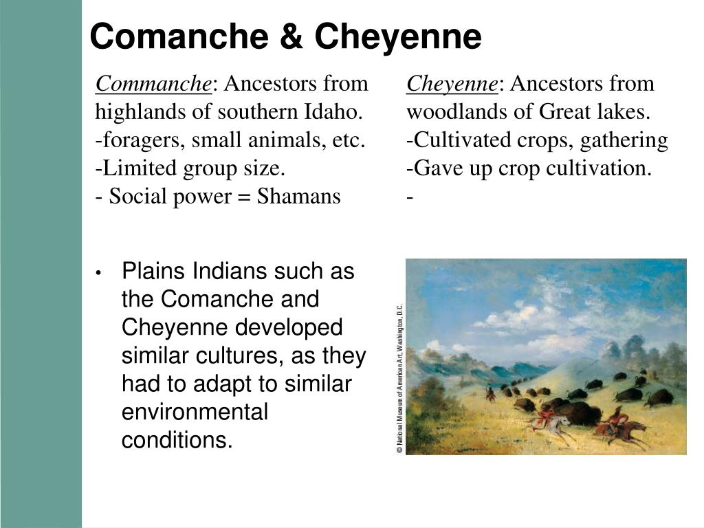 Comanche & Cheyenne