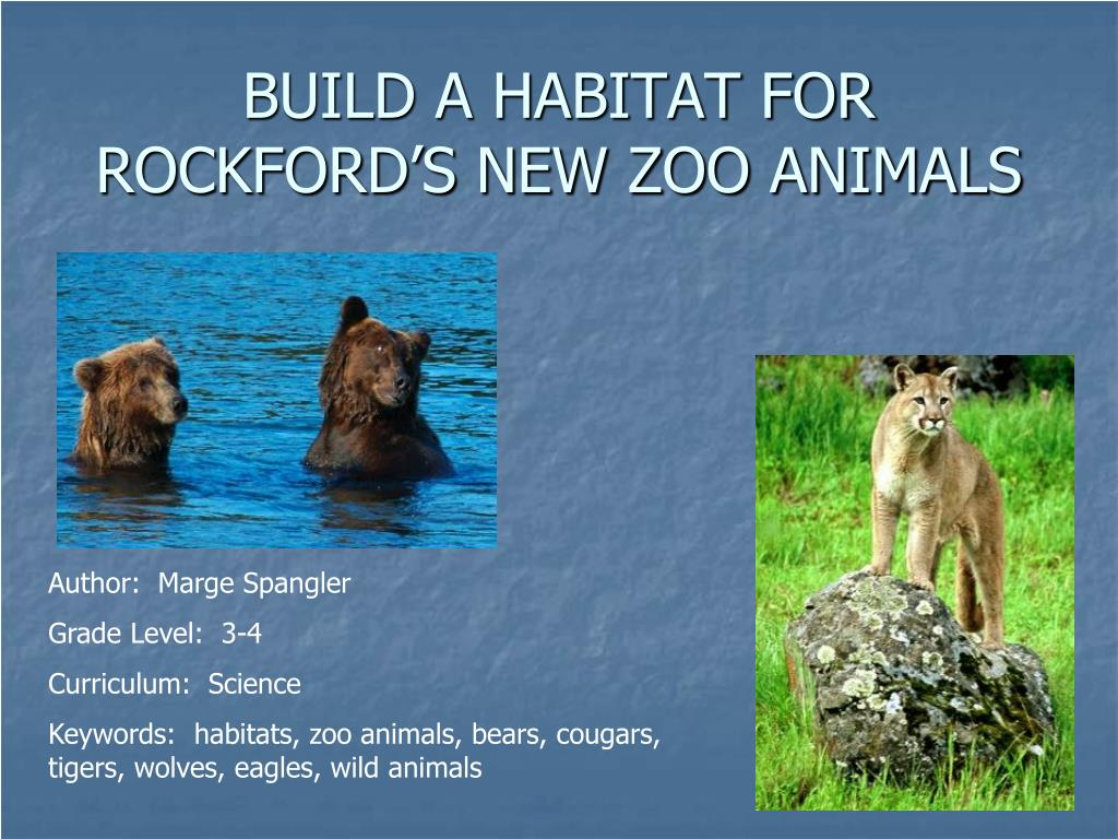 BUILD A HABITAT FOR ROCKFORD'S NEW ZOO ANIMALS