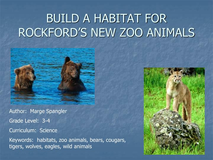 Build a habitat for rockford s new zoo animals