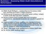 summary assessing water audit calculations performance