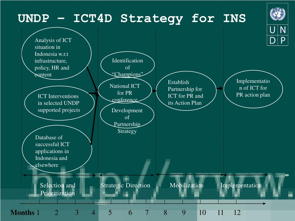 UNDP – ICT4D Strategy for INS