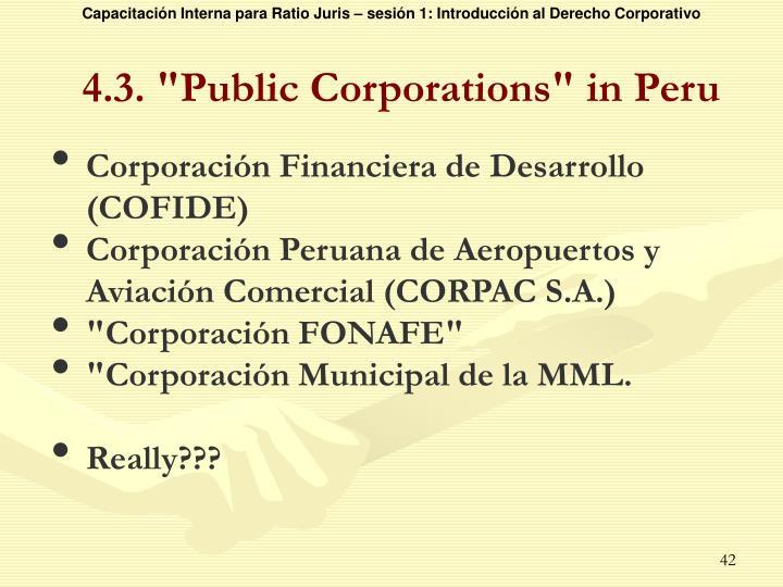 """4.3. """"Public Corporations"""" in Peru"""