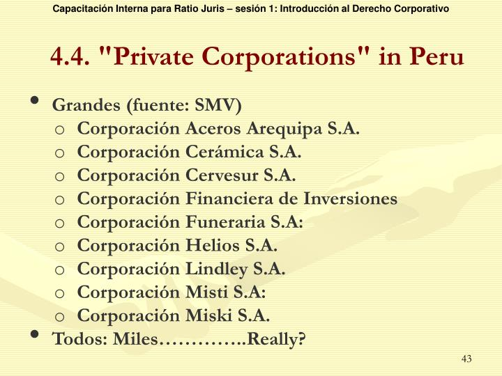 "4.4. ""Private Corporations"" in Peru"