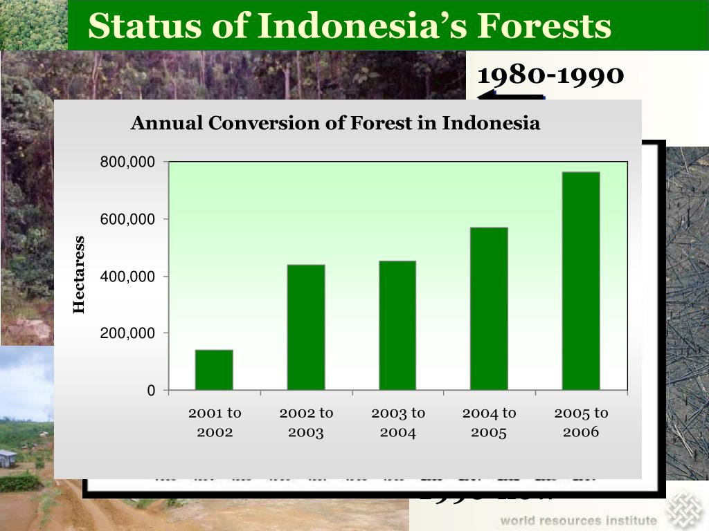 Status of Indonesia's Forests