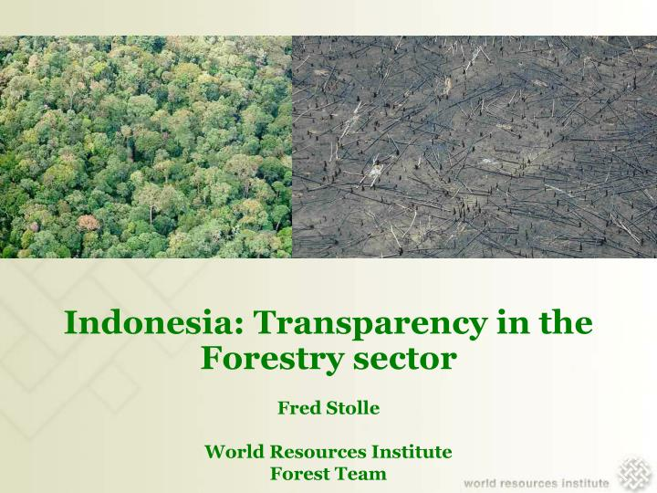 Indonesia transparency in the forestry sector fred stolle world resources institute forest team l.jpg
