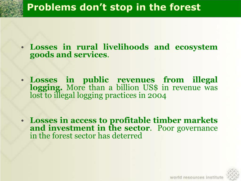 Problems don't stop in the forest