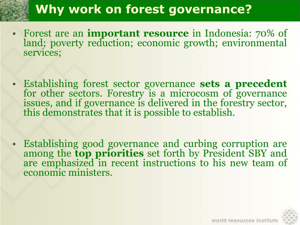 Why work on forest governance?