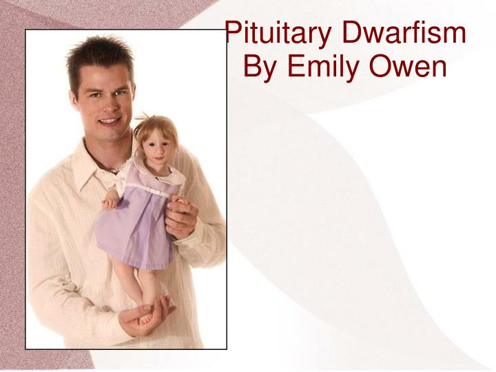 pituitary dwarfism Pituitary dwarfism is an autosomal disorder that is inherited in some breeds such as german shepherds, weimaraners, spitz, dachshunds, corgis, basset hounds, saarloos wolfdogs, and czechoslovakian wolfdogs - wag (formerly vetary.