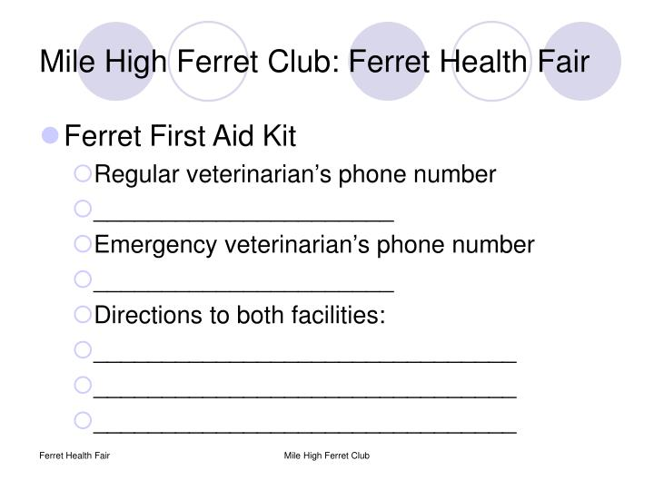 Mile high ferret club ferret health fair