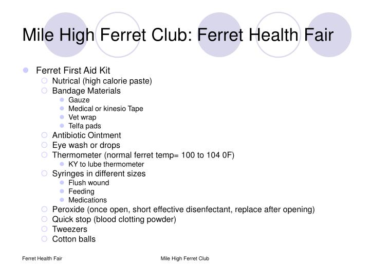 Mile high ferret club ferret health fair2