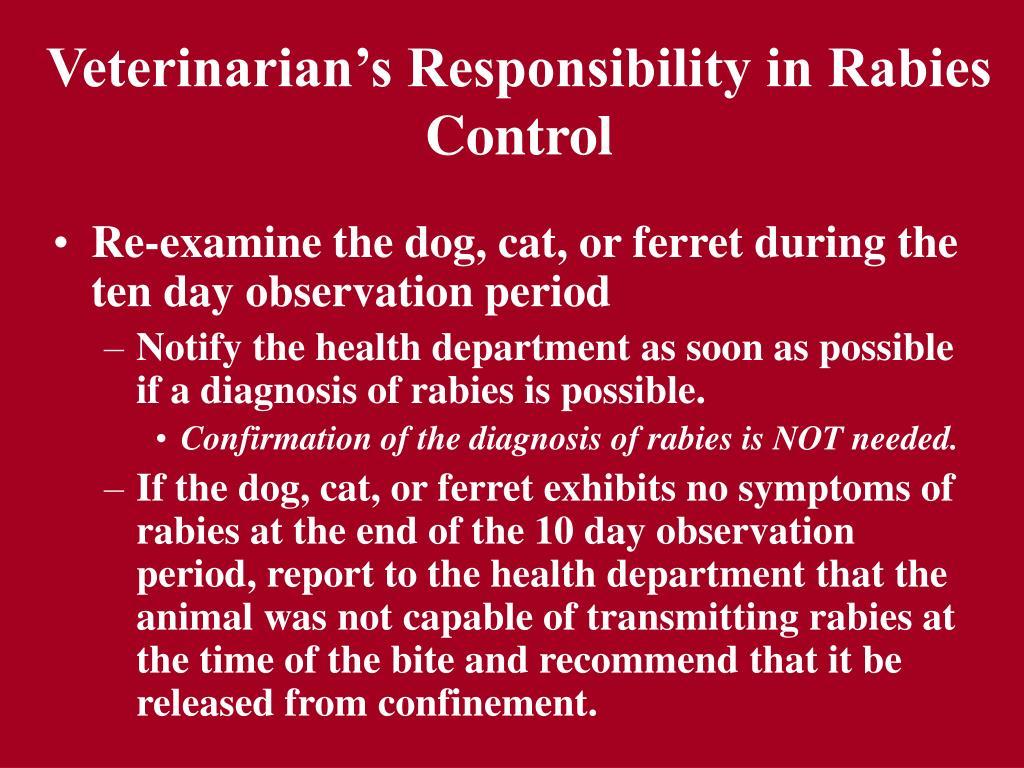 Veterinarian's Responsibility in Rabies Control
