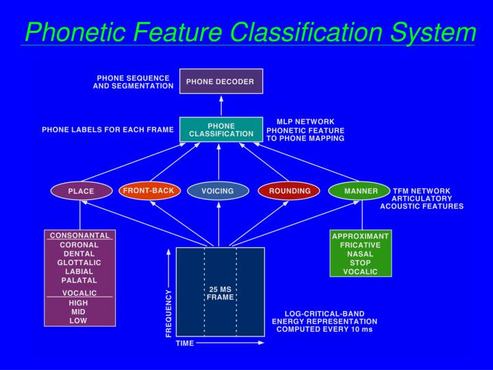 Phonetic Feature Classification System