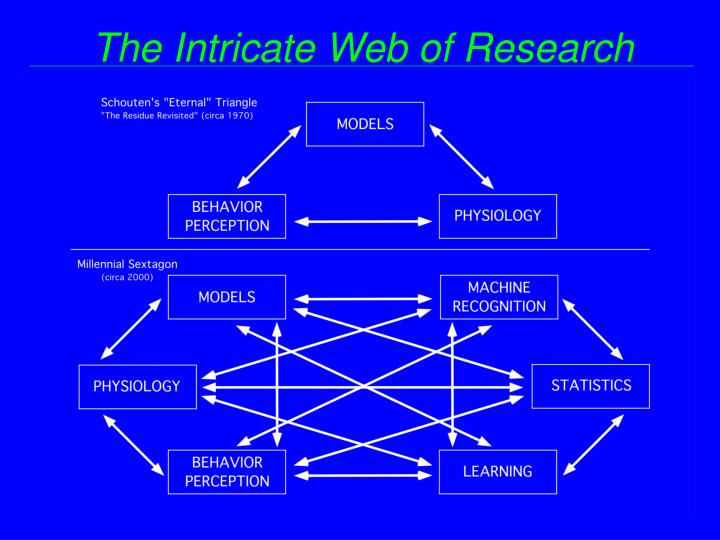 The Intricate Web of Research