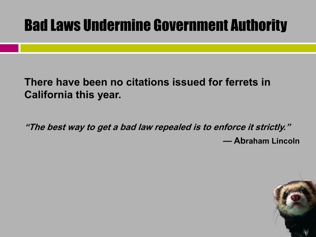 Bad Laws Undermine Government Authority