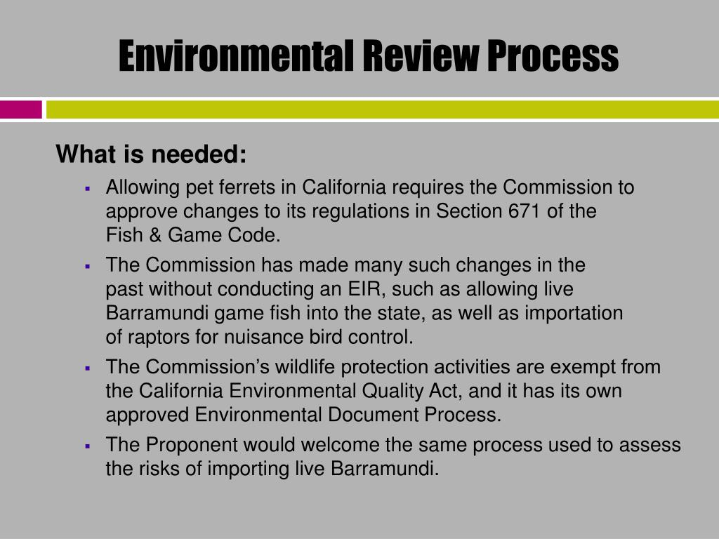 Environmental Review Process