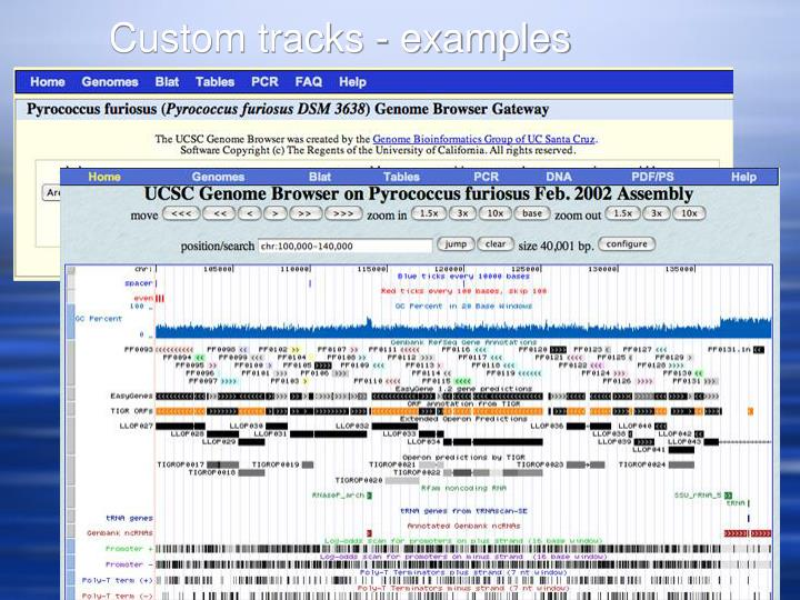 Custom tracks - examples