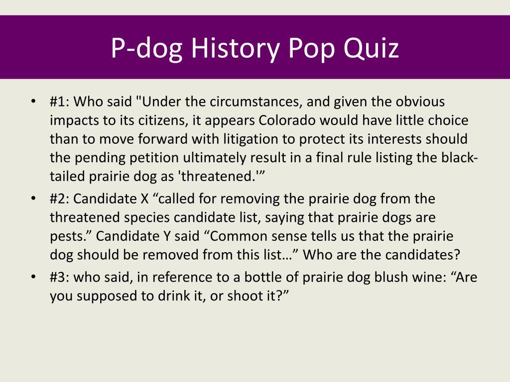 P-dog History Pop Quiz