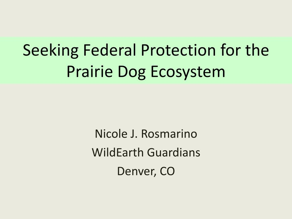 Seeking Federal Protection for the Prairie Dog Ecosystem